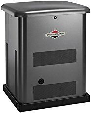 Briggs & Strattib 20KW Home Generator Review - AMAZINGLY !!!! All You Need For Whole House Alternative Power Supply for good and for worse.