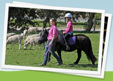 Children aged between 2 and 12 years of age can take a ride on Bonnie around the field. We'll provide the helmets and the pony, the children provide the smile! Pony rides are fully supervised and led by our trained staff.