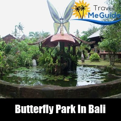 Top 10 Things To Do In Bali | Travel Me Guide