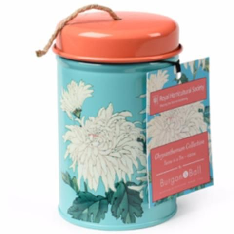 BURGON & BALL  |  Chrysanthemum Twine in a Tin - Royal Horticultural Society