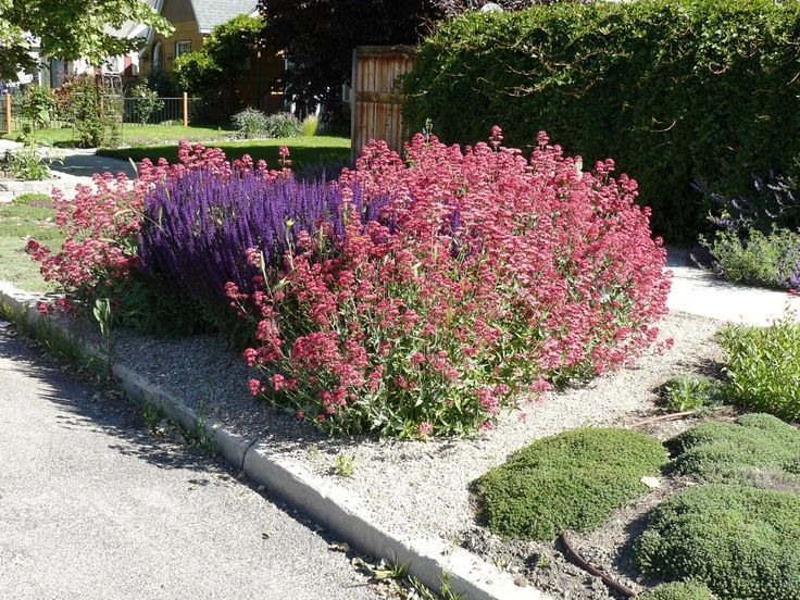233 best bend oregon landscaping ideas images on for Indoor gardening rainier oregon