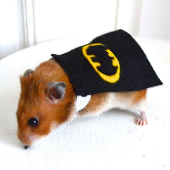 Batman costume hamster / guinea pig / chinchilla by laMarmotaCafe, $9.00