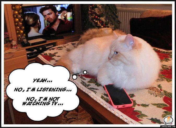 Pesky phone calls...