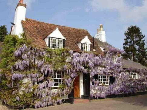 Holly Bush Pub, Potters Crouch, St. Albans, Hertfordshire, AL2 3NN on UK Pub Finder .com