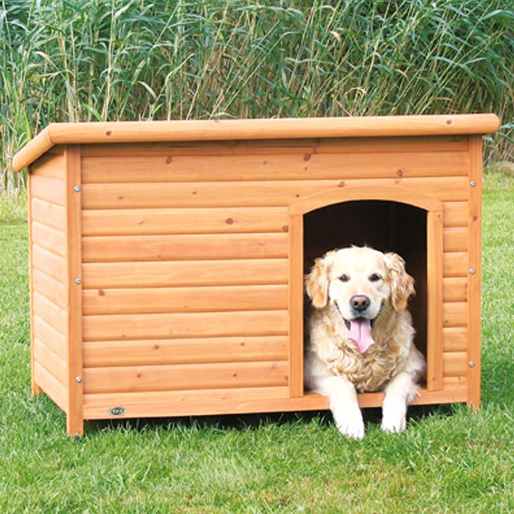Choose this flat-roofed extra-large dog house to help your furry friend stay out of the elements. The dog house features a hinged lid for easy cleaning. Its plastic-tipped legs allow air to flow, reducing the likelihood of overheating.