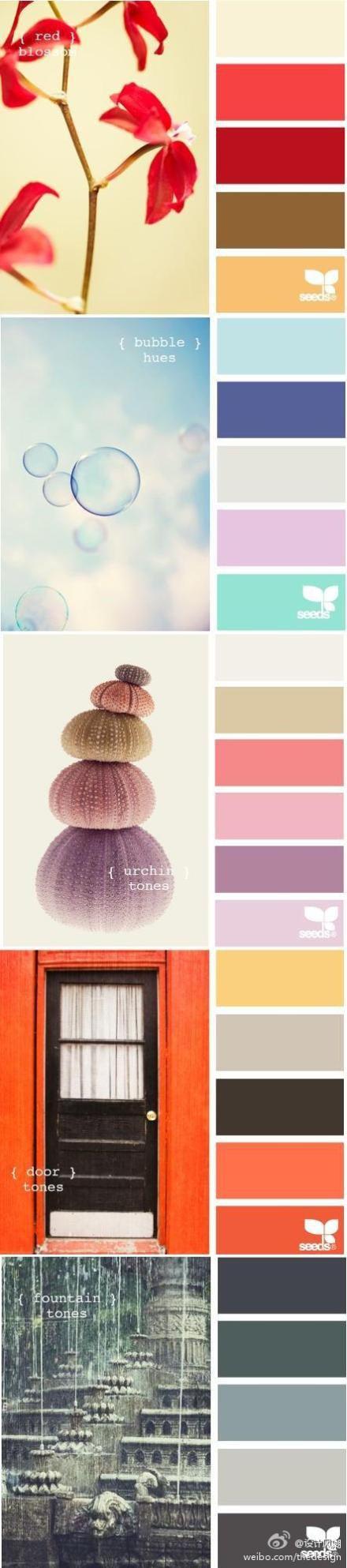 Thiết kế xu hướng: Mimi màu sắc!  - Sinh viên Lee 017 ...