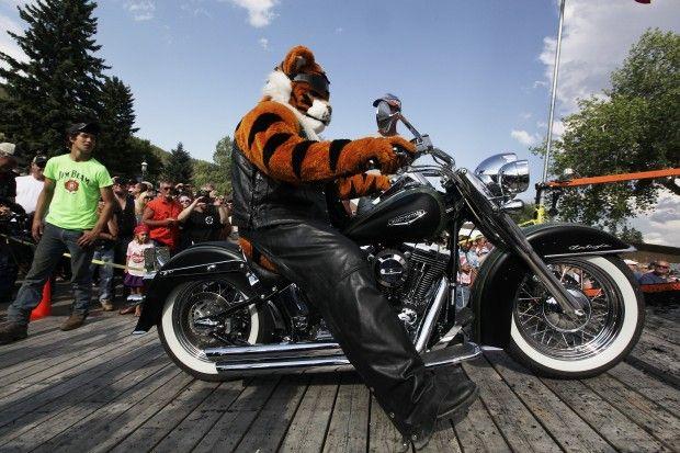 Tigers like burnouts too. #Sturgis2013 #SouthDakota #motorcycle #tiger