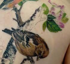 wren tattoos - Google Search