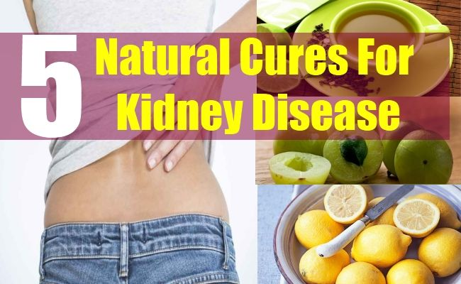 (adsbygoogle = window.adsbygoogle || ).push({}); Kidney disease symptoms in adults The above mentioned vitals have a location right under the rib cage. They carry the responsibilty for cleansing & detox. In layman's terms they are that part of your body machinery that filters 10-150 quarts blood every 24 hours. This is vital for every body functions & it keeps the blood healthy too.   #5-Natural-Cures-For-Kidney-Disease #Herbal-Remedies-For-Kidney-Failure #Kidney disease