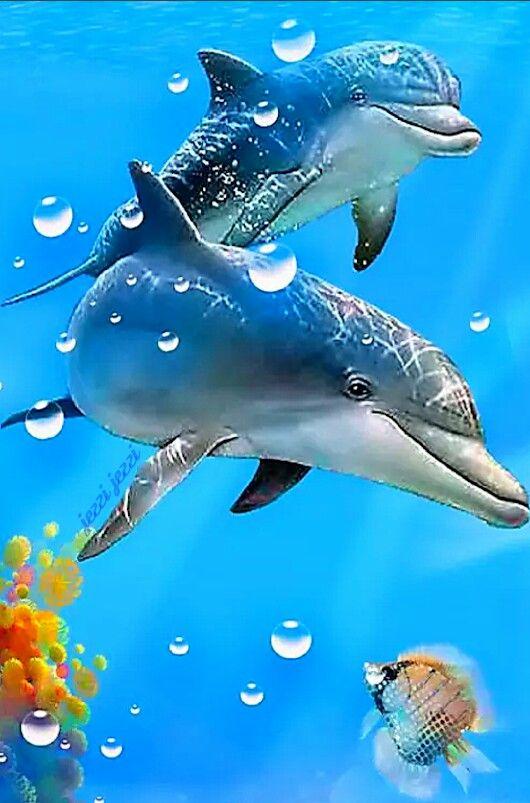 Me Para Gusta FlorCuadros Pintados DelfinesAnimales Acuáticos zMVpGUSq