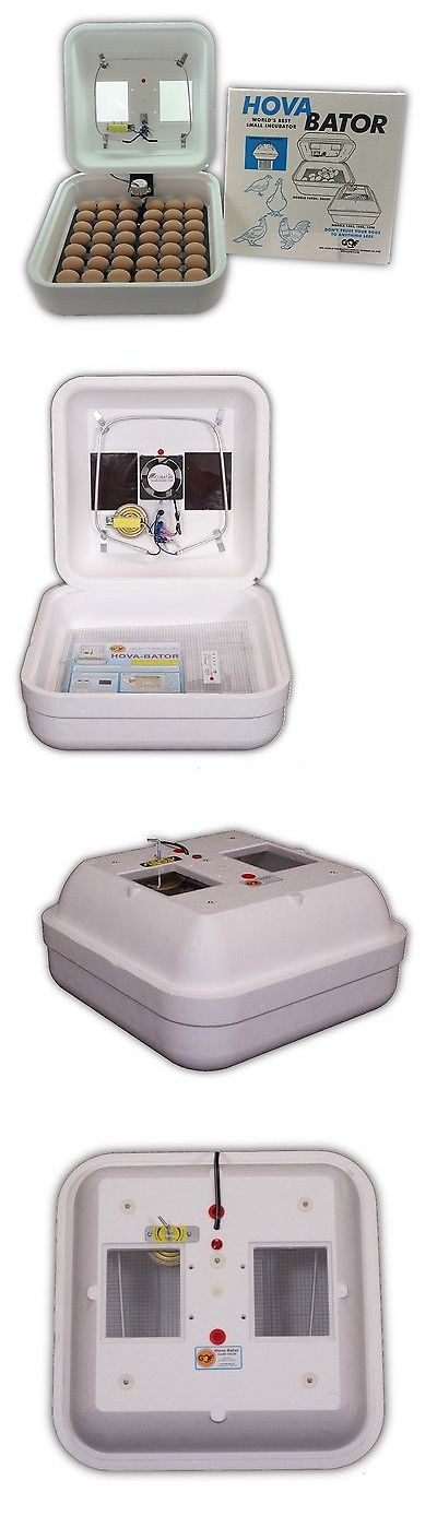 Incubators 46292: Hovabator 1602N Egg Incubator | Incuturn Automatic Turner | Poultry Chicken Bird BUY IT NOW ONLY: $84.0