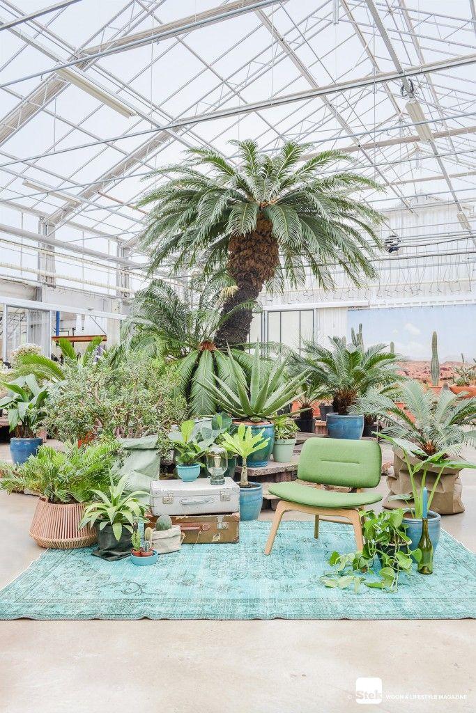 Botanisch wonen   Editie 02-2016   Planten   Tuincentrum Het Oosten   Stoel Yurt Collection   Uashmama paperbags   Normann Copenhagen Amp Lamp   Wonenmetlef