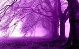 Scenery Wallpaper: Purple Scenery Wallpaper