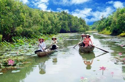 Chèo thuyền du lịch sinh thái sông nước miền tây