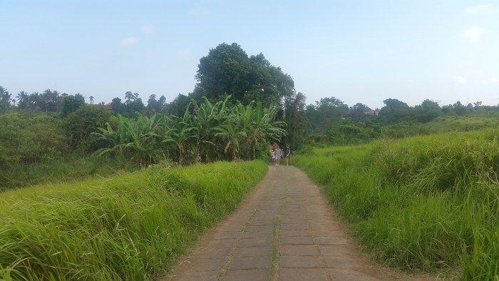 bali nature trek