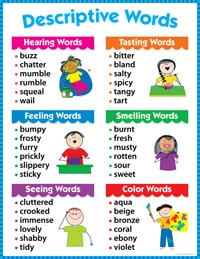 Descriptive Words Writing Educational Poster Chart CTP New | eBay