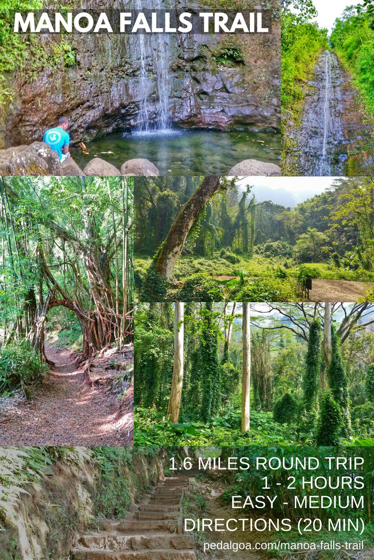 Hiking Hawaii: Manoa Falls Trail. US hiking trails, Oahu hikes for Hawaii vacation!Best Oahu hiking trails gives you things to do near beaches for swimming, snorkeling! List, planning tips fromWaikiki, Honolulu. Morning hiking, afternoon shopping, eating food at restaurants!Outdoor travel destinations for the bucket list for budget adventures! Add outfits, what to wear in Hawaii, what to pack for Hawaii packing list. Oahu hikes pocket guide, Oahu travel guide book pdf, map. #hawaii #oahu