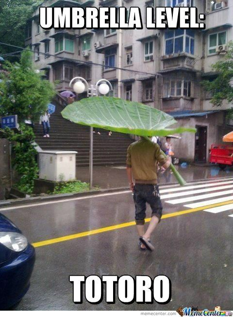 From this season's Forest Spirit Collection: the Totoro Umbrella!  No idea who made it originally, but here is a funny little My Neighbor Totoro / Hayao Miyazaki meme, to brighten your day.  Featuring an everyday human being attempting the old Kappa trick (famous from manga, anime and folklore) of using a giant leaf as an umbrella.  Seems to be experiencing a fairly epic level of success, so I hereby label it 'Awesome'.  Enjoy :)