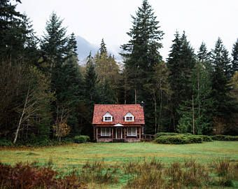 Fall Cabin Photo, Large Evergreen Trees, Outdoors Photo, Washington parks, Misty tree Photography- Red Riding Hood's House
