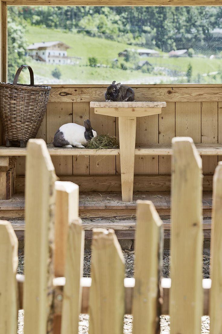 Streichelzoo im Feriendorf // Petting zoo in the holiday village