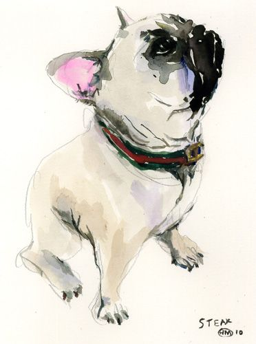 Pet Portrait by @Ashley Yoon Menocal