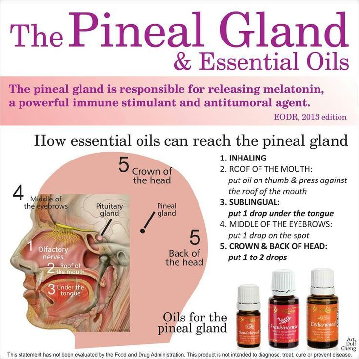 http://www.wakingtimes.com October 22, 2014 There are various methods to cleanse the pineal gland, from various supplements to psychedelic plant medicines such as iboga. Essential oils can also be used to help detox and stimulate the pineal gland, which is responsible for releasing the substance melatonin and is believed to be involved in reaching higher levels ...Continue Reading