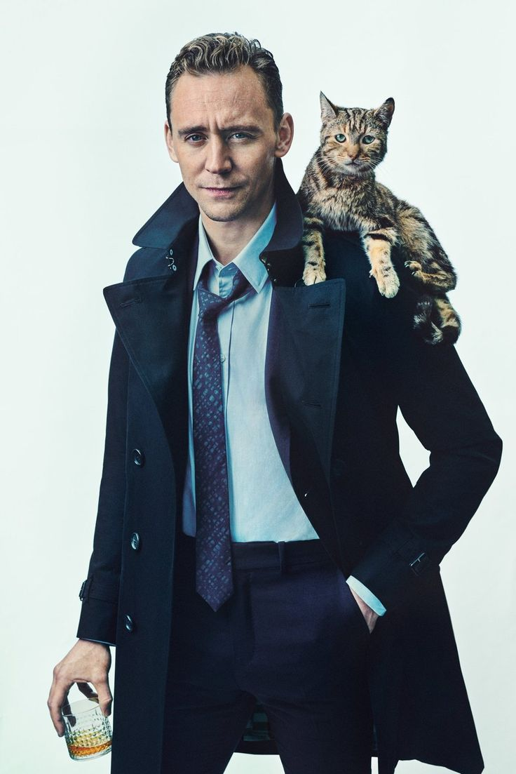 I don't want to see a cat on Tom Hiddleston's shoulder....... Said no one ever.