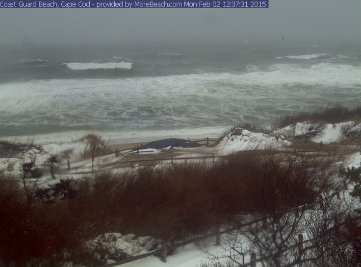 Coast Guard Beach 2-2-15