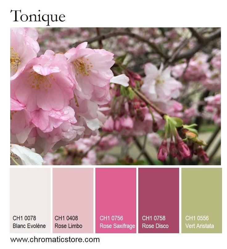 Le rose associé au vert en petites touches donne un effet tonique et apporte de la luminosité à une pièce. www.chromaticstore.com #rose #vert #déco