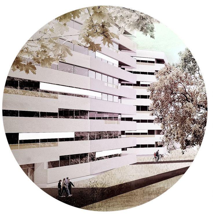 Paolo Fromage · Parcelle de l'Université · Divisare