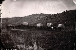 Mormon Pioneers - LDS church history archive.