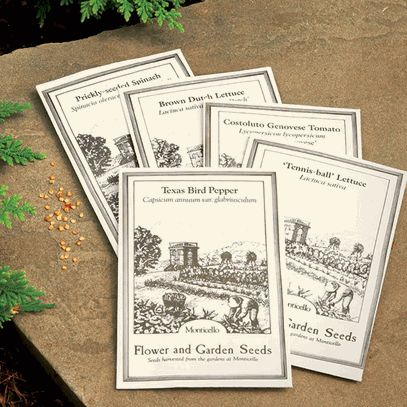 Seed Samplers from Thomas Jefferson's Monticello Gardens ...  |Thomas Jefferson Garden Seeds