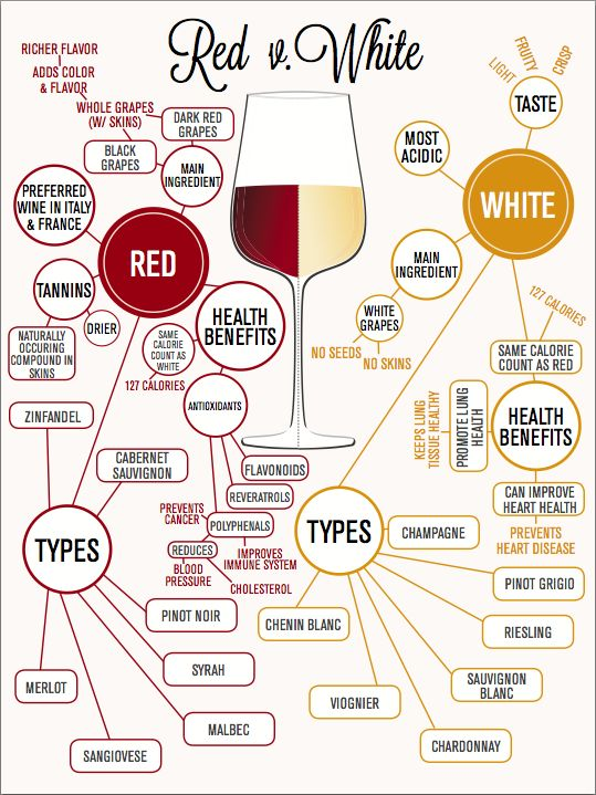 Red and White Wine Infographic