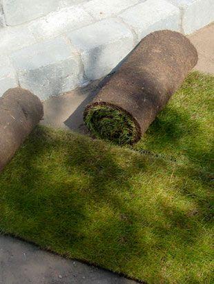 Spar 20% #rullegræs