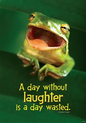 """""""A Day Without Laughter is a Day Wasted"""" poster...an inspirational quote for the day!"""