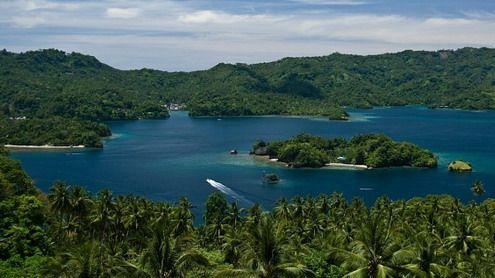 Bitung, Indonesia | Lembeh Strai Island,Indonesia. | Nakarasido Hita