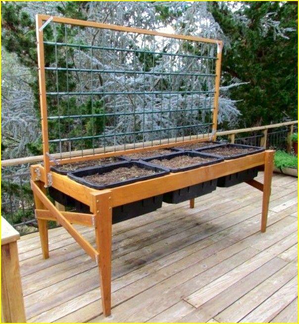 Waist high raised garden beds plans gardening huerto - Waist high raised garden bed plans ...