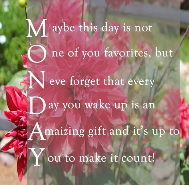 Mondays                                                                               More