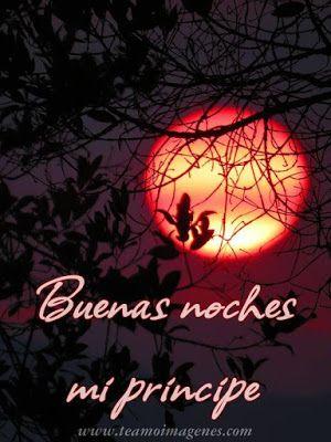 buenas noches mi principe #amor #principe #buenasnoches #feliznoche #españa #usa #love