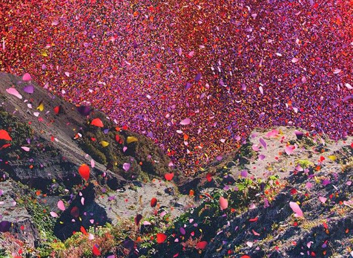 what happens when you put 8 million flower petals into a volcano. The result is truly amazing! Although this is a marketing campaign for Sony's new 4k TV, we couldn't resist sharing for inspirational purposes