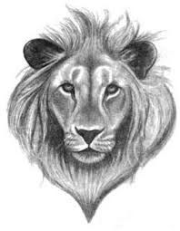 aslan tattoo - Google Search
