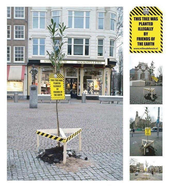 Tree activation