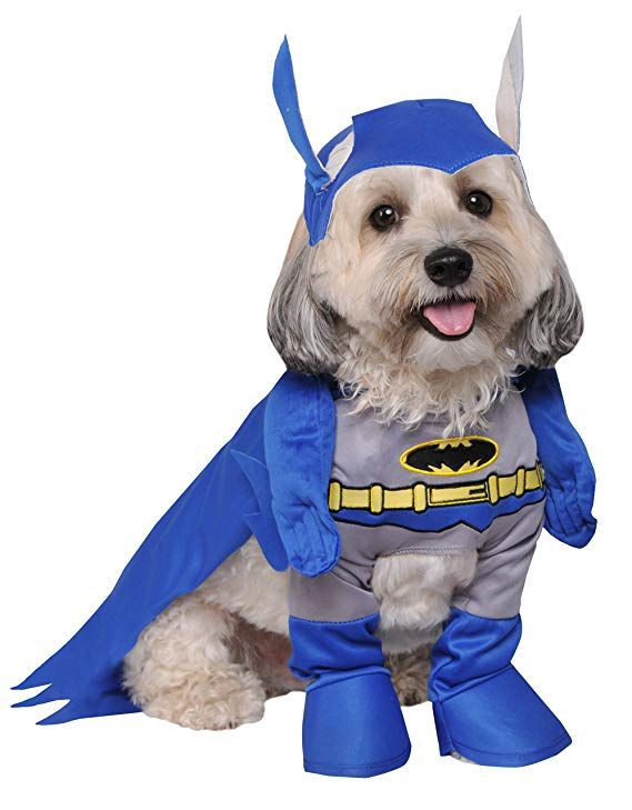 Rubie S Batman The Brave And The Bold Deluxe Pet Costume