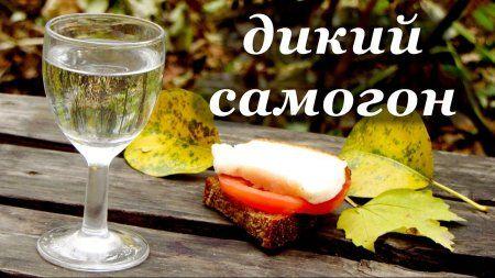 Рецепт самогона без дрожжей, дикий самогон