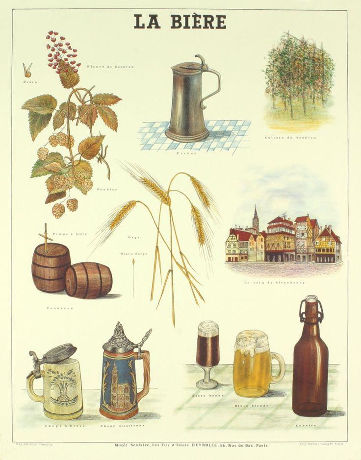 Deyrolle - La Biere | Auction.fr
