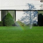 Tips for an eco friendly lawn - don't cut too short, and try making compost tea!