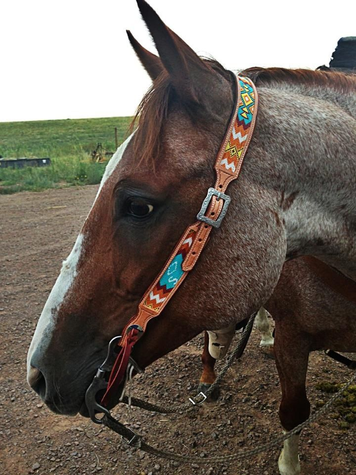 Beaded headstall by k bar heart beadwork!  Find us on Facebook!