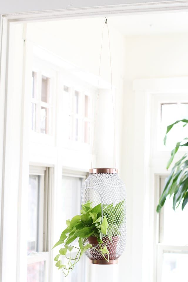 Lantern to Planter: A Super Easy IKEA TOPPIG Hack | Apartment Therapy