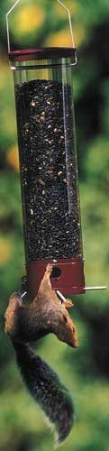 The Yankee Dipper Squirrel Proof bird feeder-90o by Droll Yankees. From the leaders in squirrel-proof bird feeders... Prevent large bully birds and squirrels from eating all your bird food! Save money