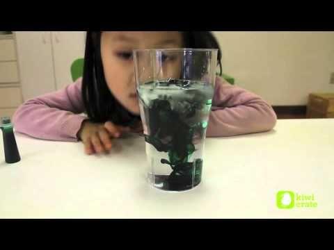 Diferencias entre el agua salada y el agua potable- YouTube